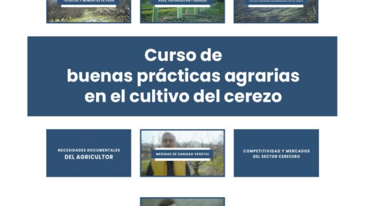 plataforma de formación online para el sector de la cereza